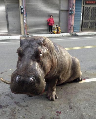 (foto noticias.lainformacion.com