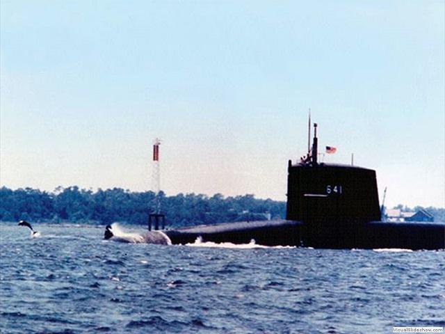 Submarino Simon Bolivar delfines