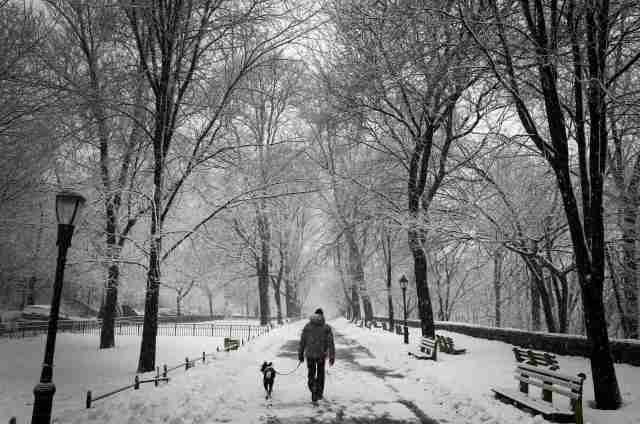 A man walks his dog in falling snow in Riverside Park in upper Manhattan in New York City