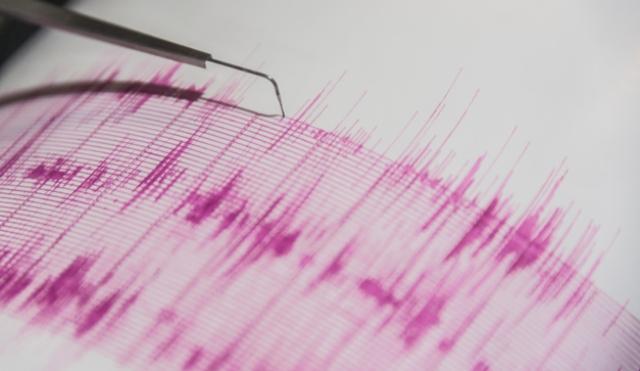 algunos-hasta-hemos-fabricado-nuestros-sismografos-caseros