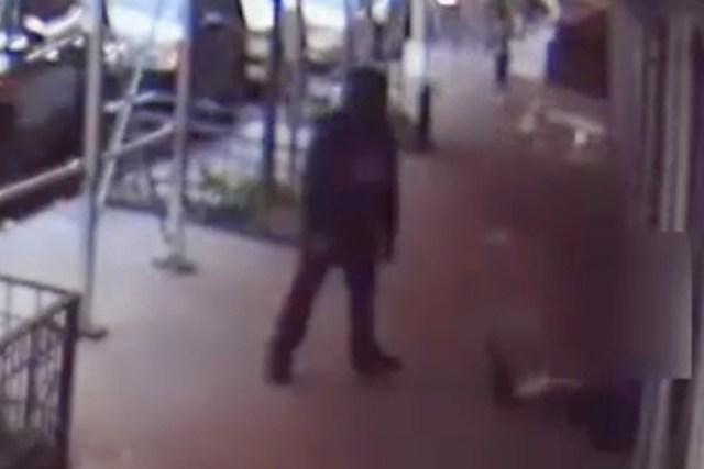 Rick Moranis ataque 3 - Actor de Los Cazafantasmas fue derribado y golpeado mientras caminaba por Nueva York (VIDEO)