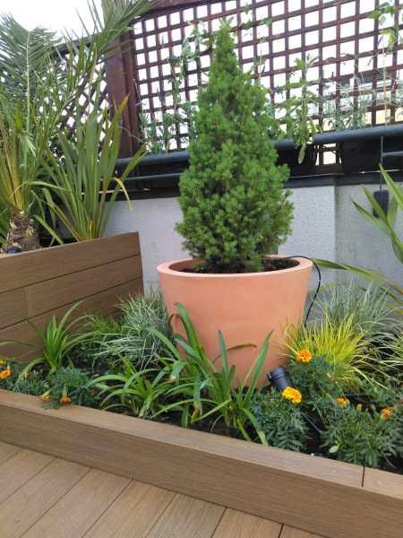 Jardineras en terraza con tarima y macetas