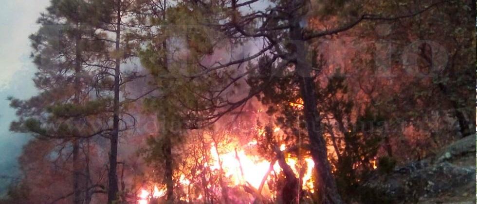 Vientos en zona de incendio mantiene en alerta a brigadistas