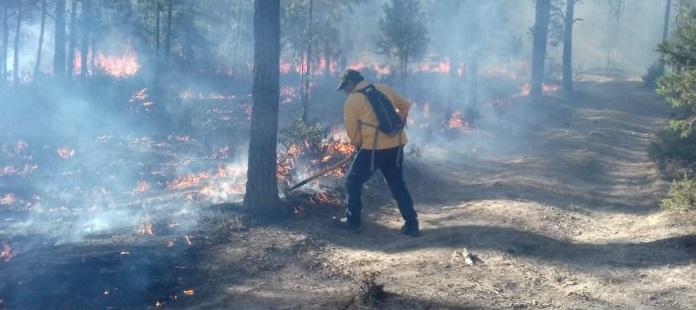 Controlan incendio forestal en la sierra Tarahumara