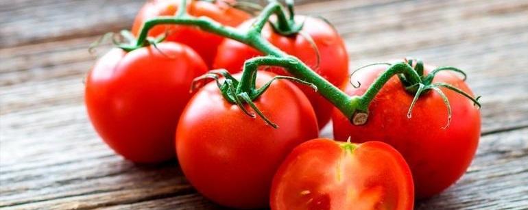 Cuota por tomate mexicano pone en riesgo el T-MEC, alerta Madero a EU