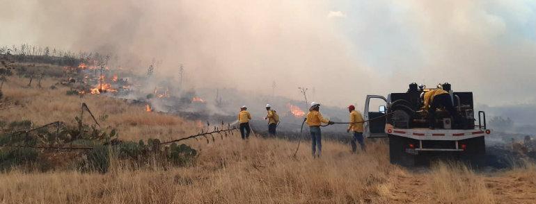 Combaten brigadistas incendio forestal en Buenaventura