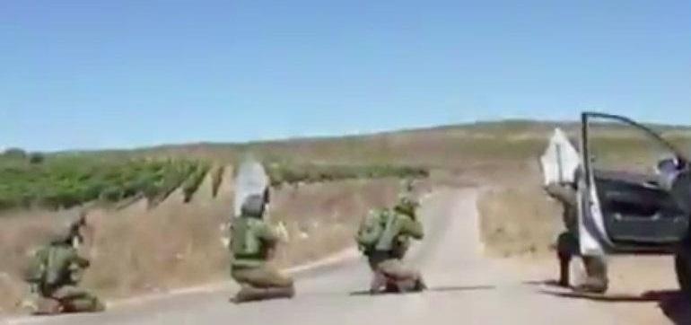 Confunden avión fumigador y le disparan soldados israelíes (VIDEO)