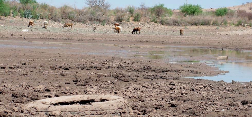 Advierte Almeida de crisis por sequía