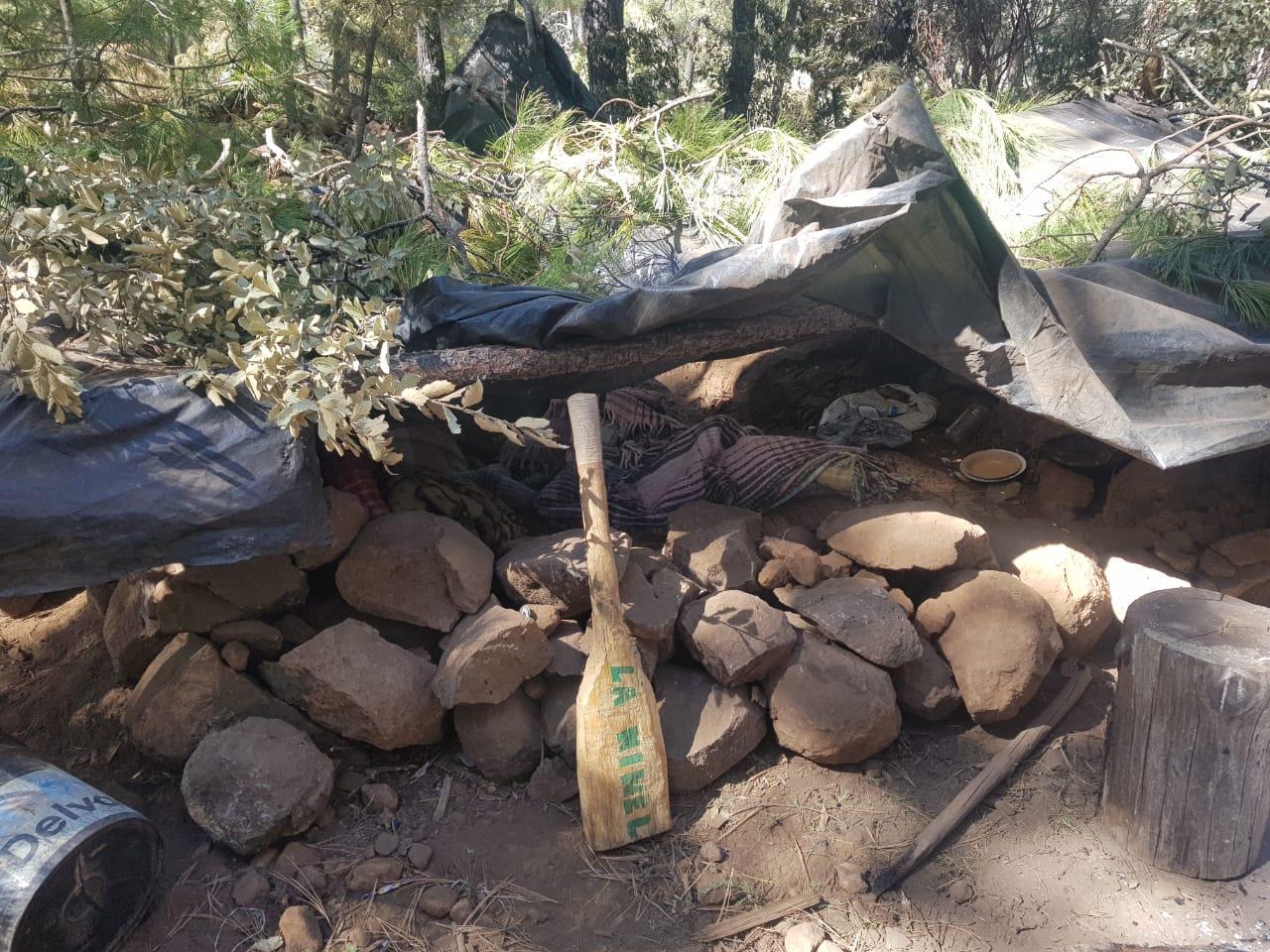 Temósachic > Aseguran media tonelada de droga, destruyen pista de aterrizaje y un campamento