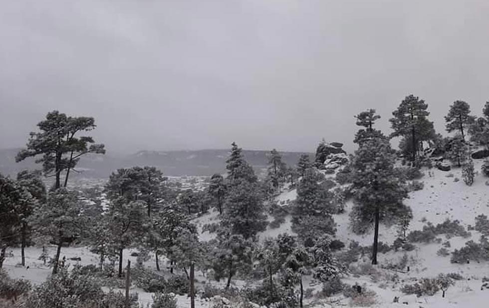 Cae nieve en al menos 19 municipios