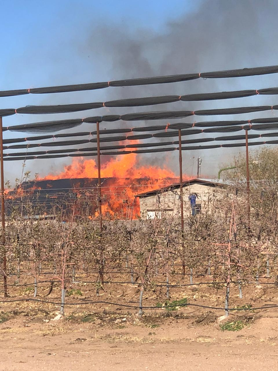 Cuauhtémoc > Incendio deja pérdidas por 2 millones de pesos