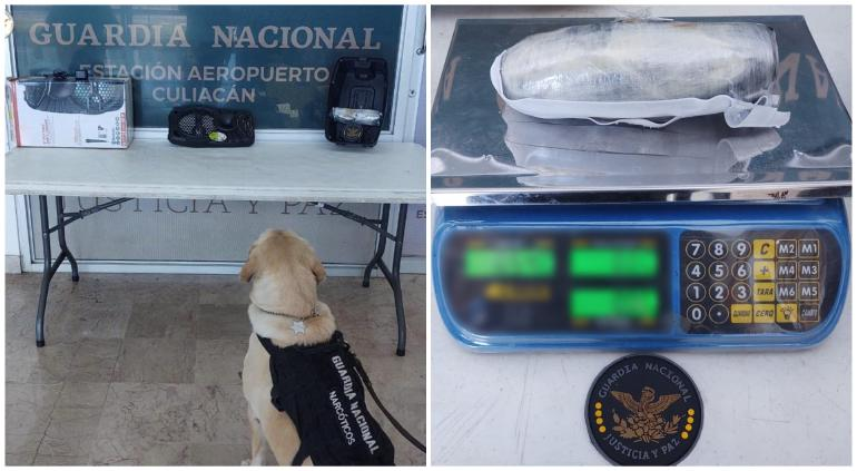 Interceptó GN medio kilo de cristal oculto en bocina; iba a Chihuahua