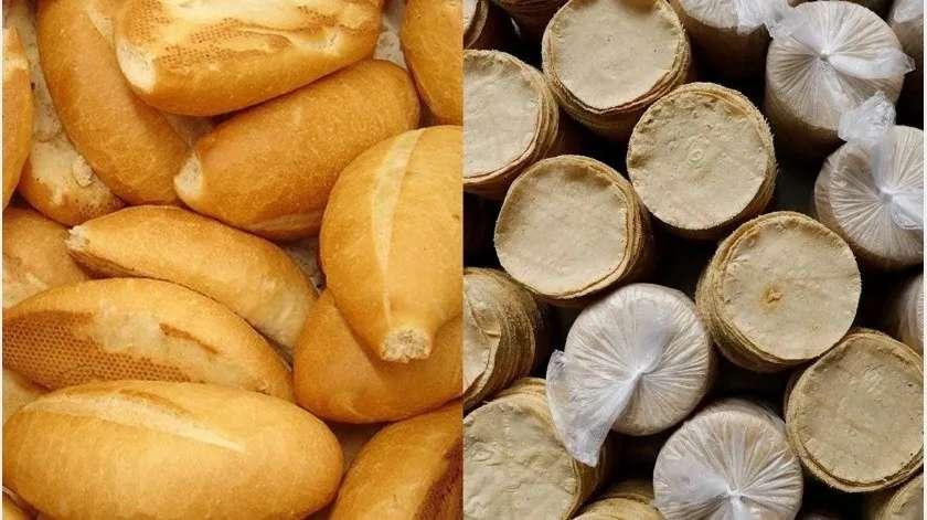 Disminuyen producción de tortillas y pan por crisis de gas