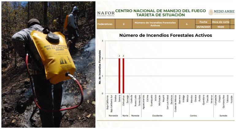 2 incendios forestales en Chihuahua y 2 en Sonora; ve aquí detalles