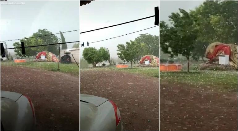 Registra Camargo daños en 4 mil hectáreas por granizo
