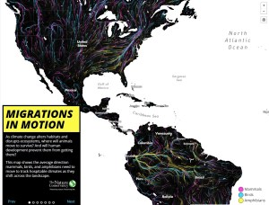 The Nature Conservancy Migration Map