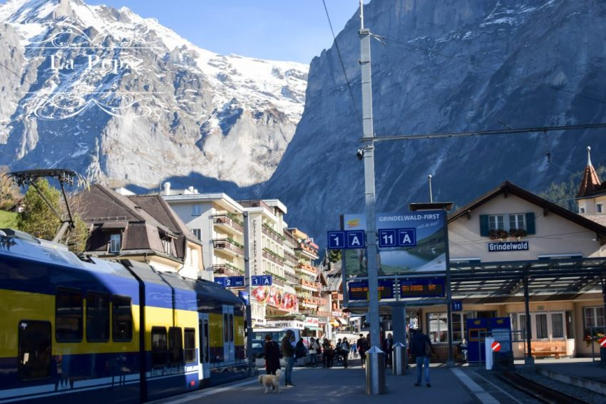 """Green Travellers 