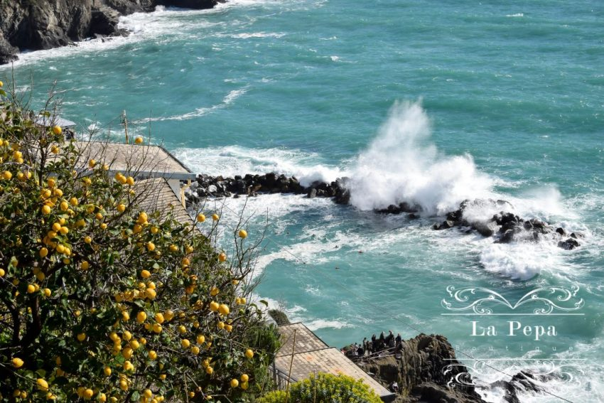 Travels | Hiking With Kids in Cinque Terre 8