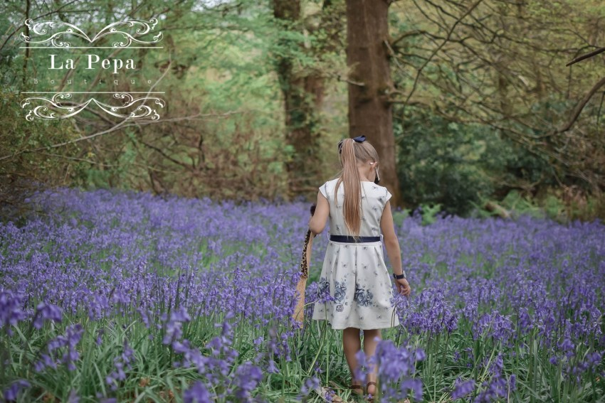 Wild Walks | In the Blue Sea of Bluebells