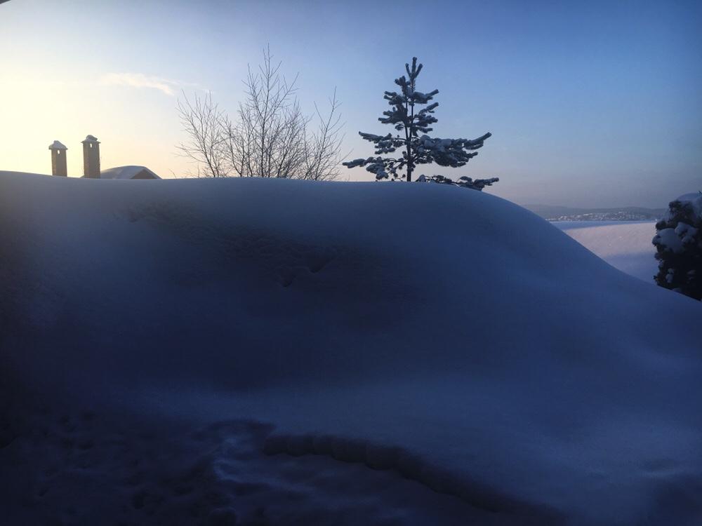 Når man er dritt lei snø!