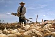 France culture propose une série d'emissions sur la situation au Mexique – Que Viva México ! (Radio)