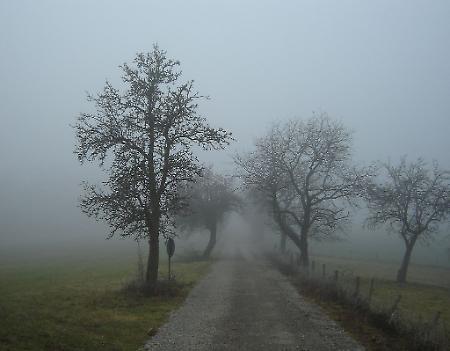 Risultati immagini per clima fresco