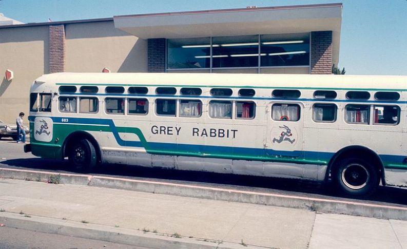 Grey Rabbit bus in San Francisco 1982