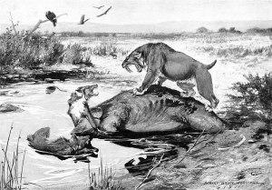 Smilodon californicus e Canis dirus litigano su unacarcassa di Mammuthus columbi nelle cave di La Brea Tar.