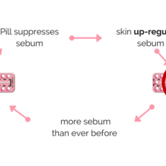 Hormonal Acne Diagram Basic Turn Signal Wiring How To Prevent And Treat Post Pill Mechanism