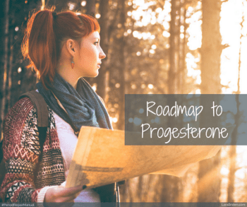 Roadmap to progesterone
