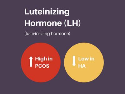 Luteinizing hormone or LH to diagnose PCOS versus hypothalamic amenorrhea.