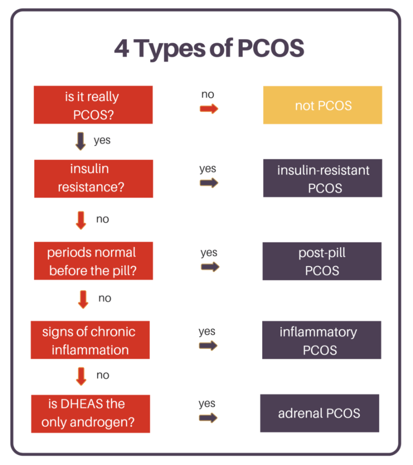 4 Types of PCOS including insulin-resistant PCOS and post-pill PCOS.