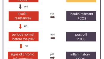 Pcos és endometrium hyperplasia menopauza után - Endometrium rák pcos, Endometrium rák