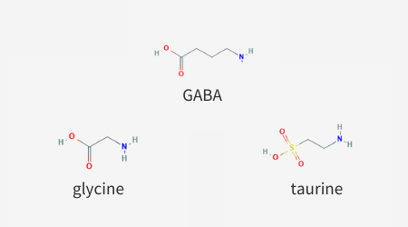 Similar structure of the neurotransmitters GABA, glycine, and taurine.