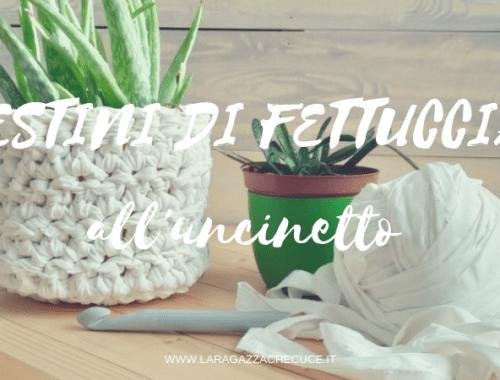 cestini di fettuccia all'uncinetto, piante grasse, aloe vera