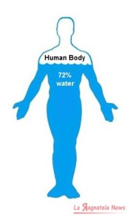 human-body-72-water