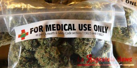 cannabis-prodotta-dallo-stato