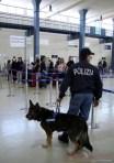 BOSTON: FIUMICINO, PIU' 'ATTENZIONE' IN CONTROLLI SICUREZZA
