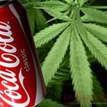"""Arriva la Coca Cola alla Marijuana, per il """"benessere psicof"""