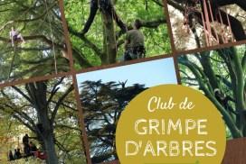 Lancement du club de grimpe d'arbres