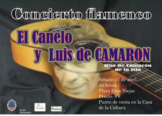 Cartel Concierto Flamenco en Cehegín
