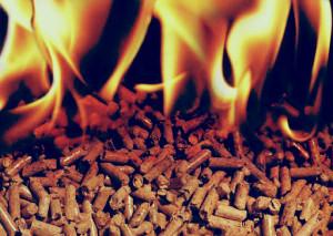 Biomasa-bionergía
