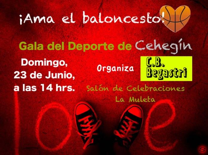Cartel Gala del deporte Cehegín 2013