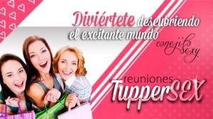 Reuniones Tuppersex de Conejito Sexy