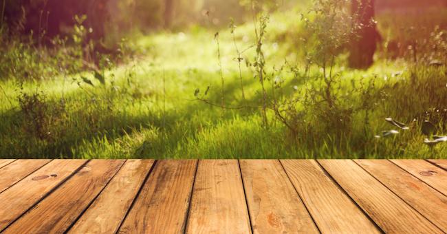 Vivere accanto al verde ci rende più sicuri
