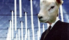 Invasion of the Lambs #5
