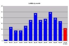 LAMB Report #8