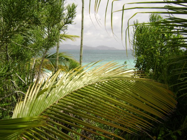 bankie-banx-dune-preserve-2