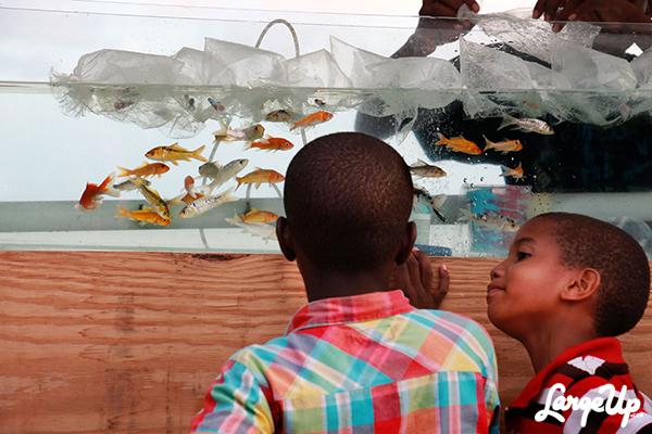 Oistins_Barbados_Fish_Fry_05