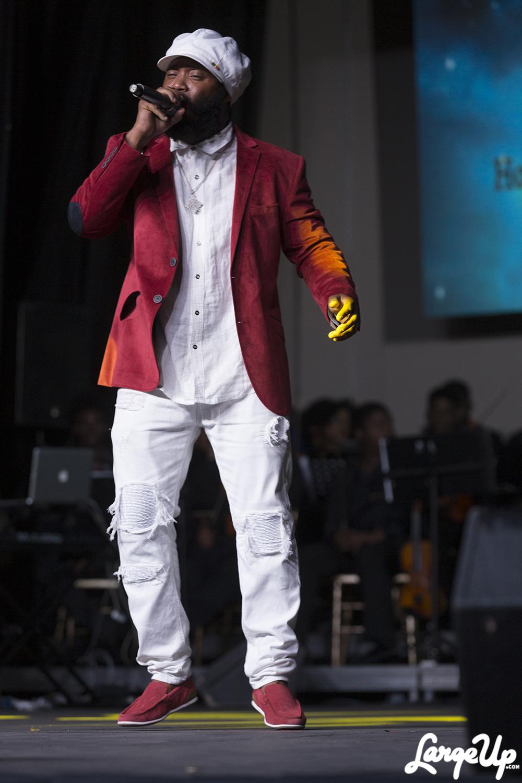 Reggae artist Warrior King